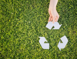 Sustainable Furniture Could Help Hotels Have a Smaller Environmental Footprint